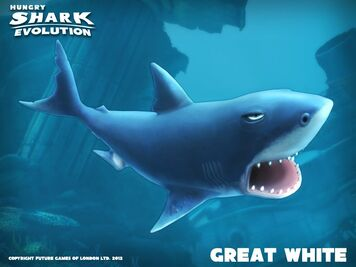 Great White Shark (Hungry Shark)