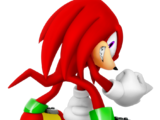 Knuckles the Echidna (Game Character)