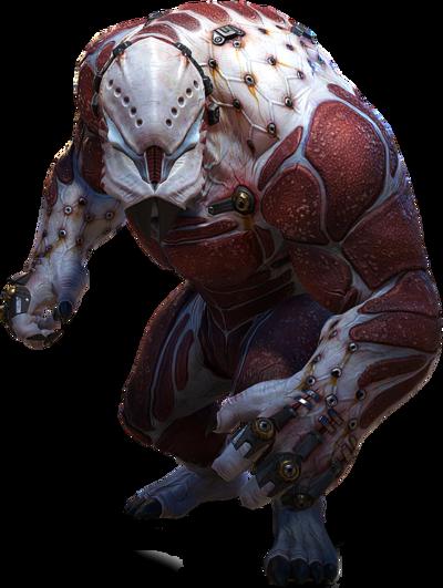 Berserker XCOM 2