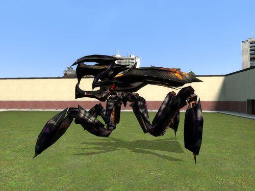 Royal Bug