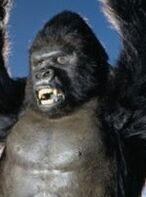 King Kong (Paramount)