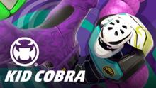 FighterKidCobra