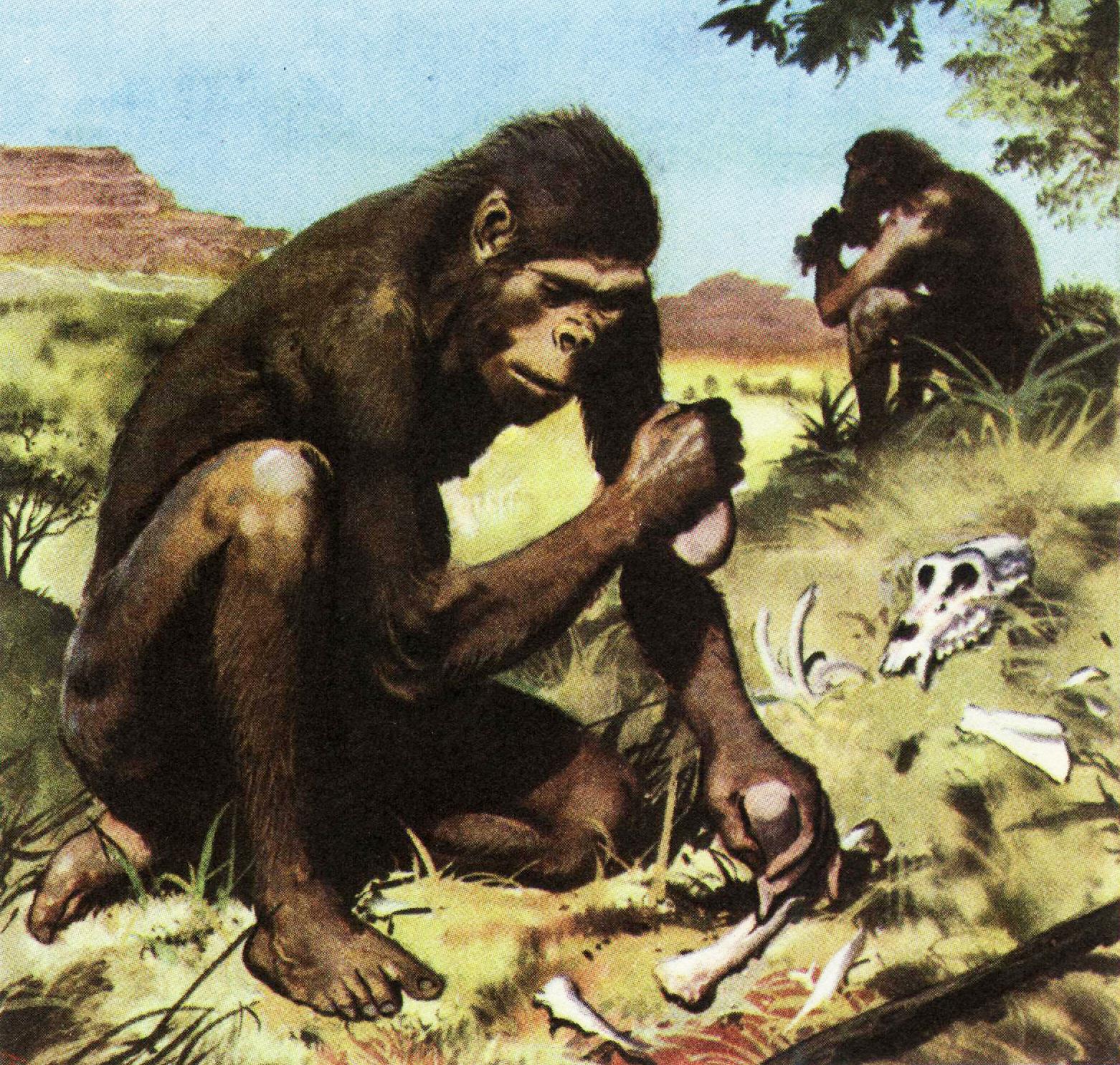 сочиняли древние предки человека картинки того, можно выбрать