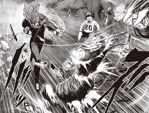 Garou Whirlwind Iron Cutting Fist