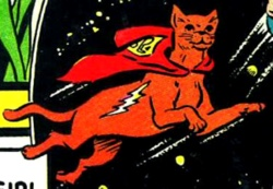Streaky the supercat