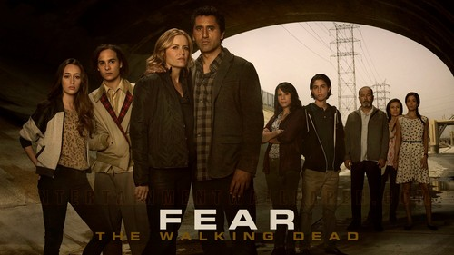 Fear-The-Walking-Dead-Wallpaper-fear-the-walking-dead-38827573-500-281