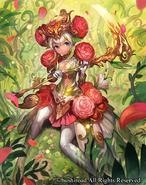 Ranunculus Flower Maiden, Ahsha
