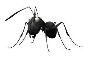 Ant Thing