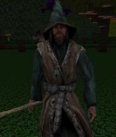 Wizard (Block Story)