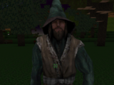 Wizard (Block Story)