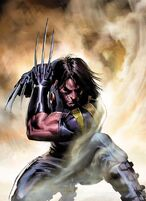 Wolverine (Ultimate Comics)