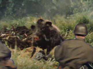 Giant Boar (Godzilla)