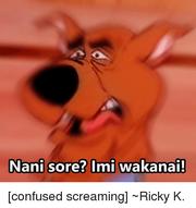 Nani-sore-imi-wakanai-confused-screaming--ricky-k-3758686