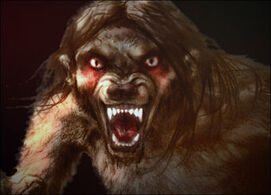 Werewolf (Lost Tapes)