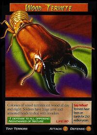 Wood Termite-1-