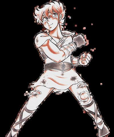 Pegasus Seiya training cloths