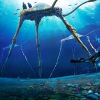 Sea Treader Concept