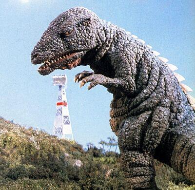 Gorosaurus3