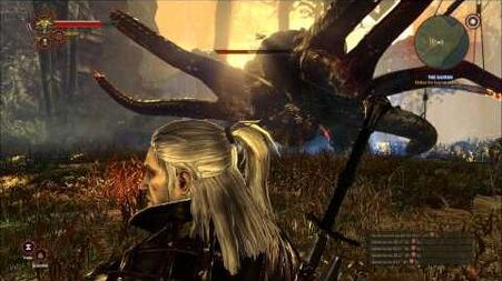 Witcher 2 How to kill Kayran