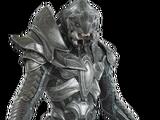 The Arbiter (Thel 'Vadam)