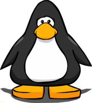 Penguin-club-penguin-wiki-beautiful-penguin-pictures