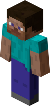 The Player (Minecraft)