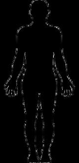 Composite Human