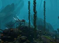 Dive the medes island secret