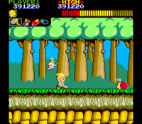 Wonder Boy arcade screenshot