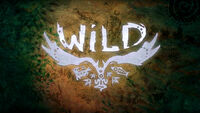 Wild PS4 cover