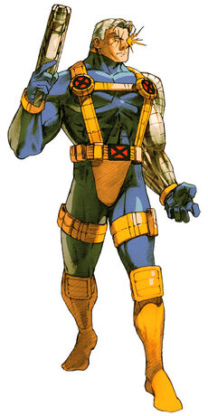 Mvc2-cable