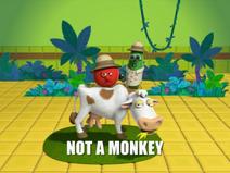 Monkey21