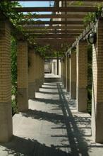 Het Instituut voor Tropische Geneeskunde