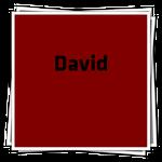 DavidIcon