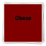 ObeseIcon