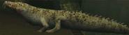 Alligator Ghoul1