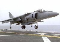 Harrier2