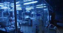 Lyndhurst lab 1