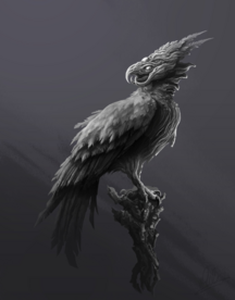 Oiseau démon