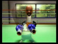 Wii Sports - Boxing - Throwing Punches