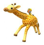 Anna giraffe