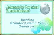 Pro Class (Wii Sports Resort)