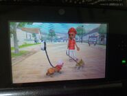 WSR Barbara and Chika in Nintendogs + Cats