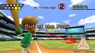 Wii Sports--Perfect Wii Fitness