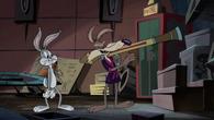 CoyoteRabbitSquirrel16