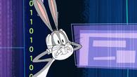 ComputerBugs36