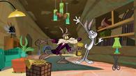 CoyoteRabbitSquirrel8