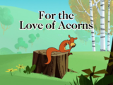 For the Love of Acorns
