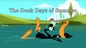 The Duck Days of Summer