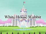 White House Wabbit